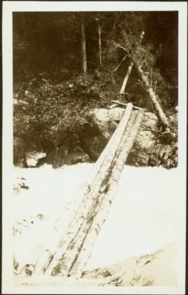 Log Pole Bridge at Canyon Creek, BC