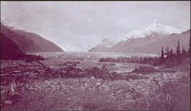 Taku River Survey - Mountain Landscape
