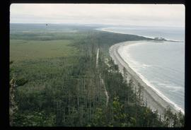 Coast of Haida Gwaii