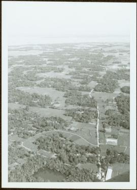 Aerial view of forest and farms