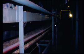 Pulpmill - General - Wood chips on conveyor belt