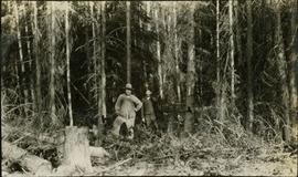 Two men standing in front of trees with axes in their hands