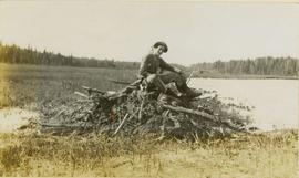 A man sitting on a pile of logs