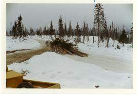 Large load of logs on a snowy road